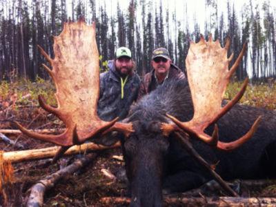 BCO Moose