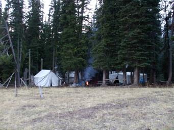 CDID Camp
