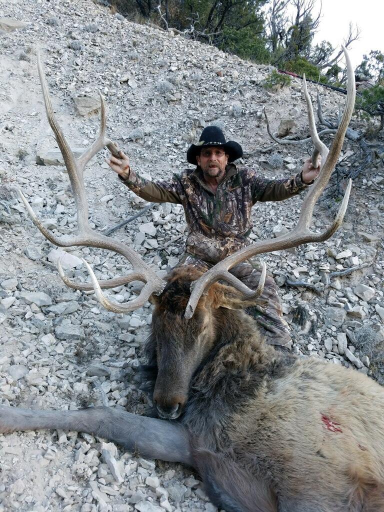 CW Elk Ken