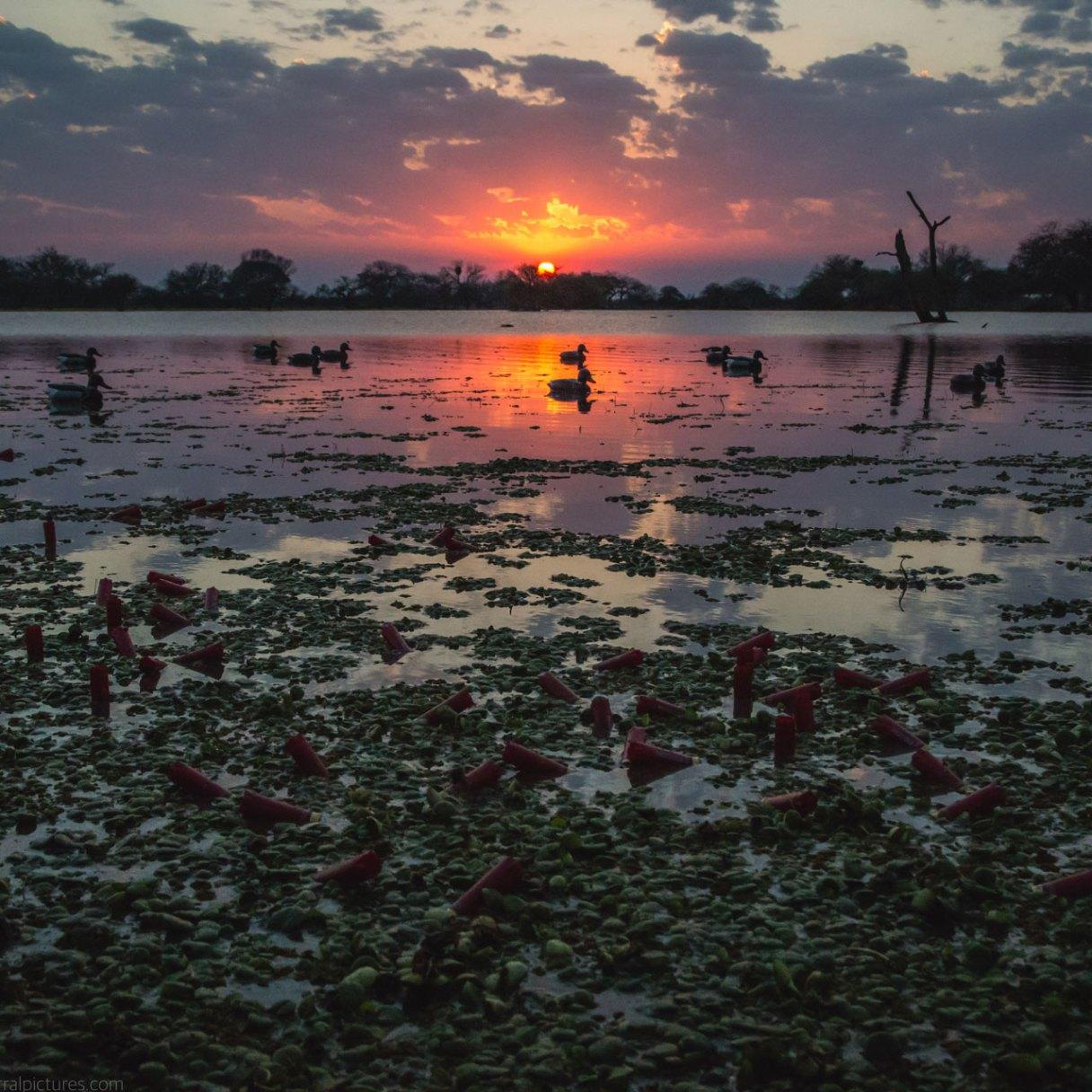 Frontera Veracruz Sunrise
