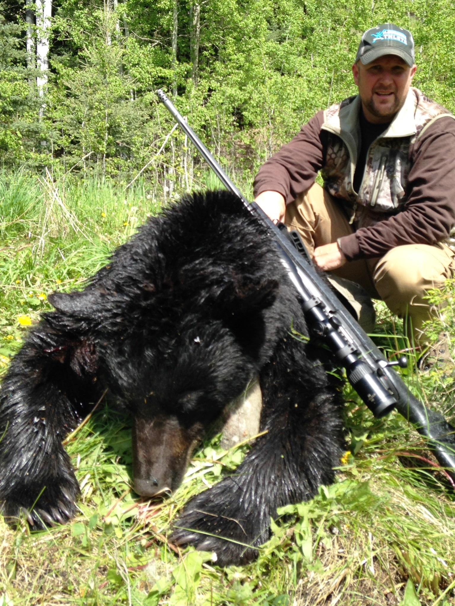 Greg BC Bear 2014 2