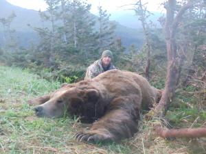 LD Brown Bear 4