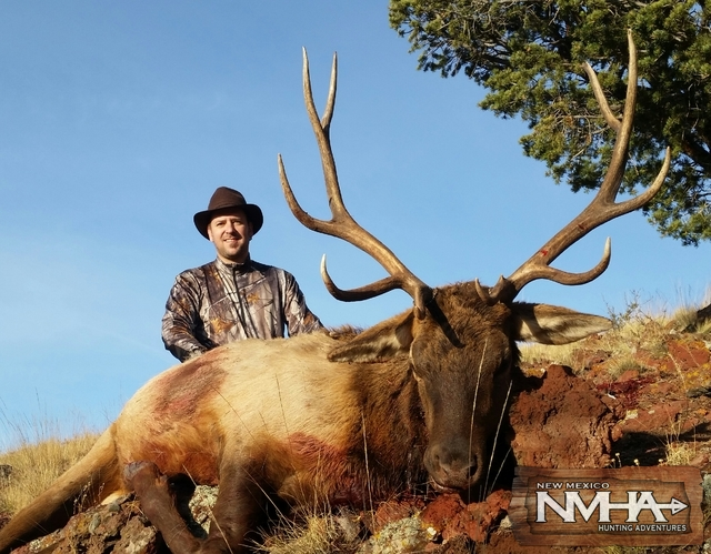 NMHA Elk2