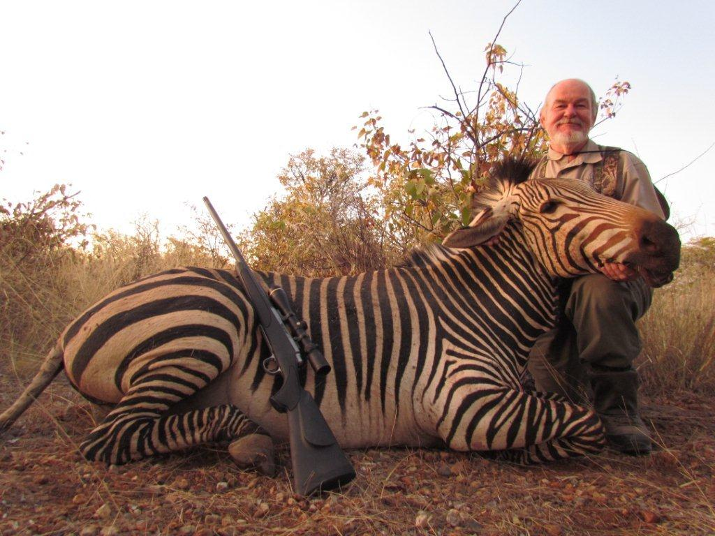 Onduri Zebra 2012