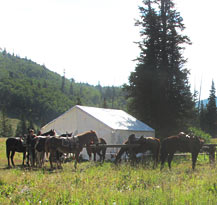 PS Tent