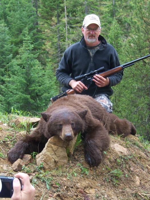 RP Bear2