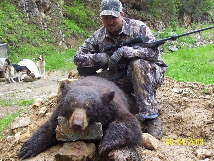 RP Bear3