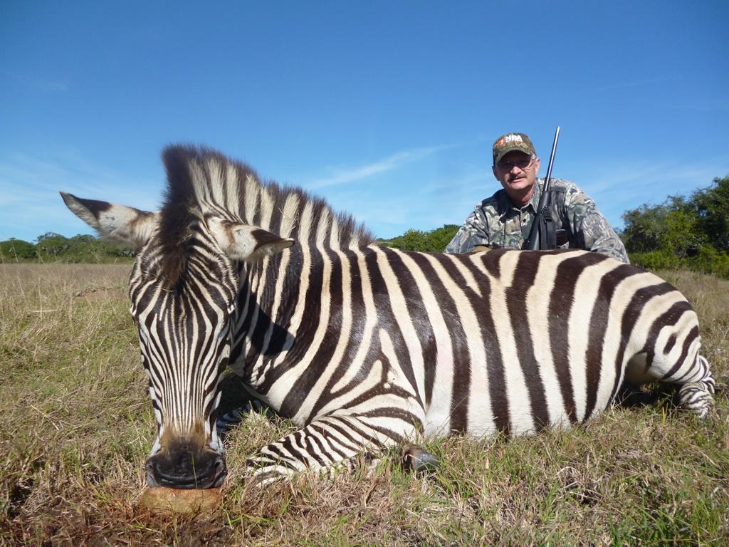 SI Zebra Kyle G