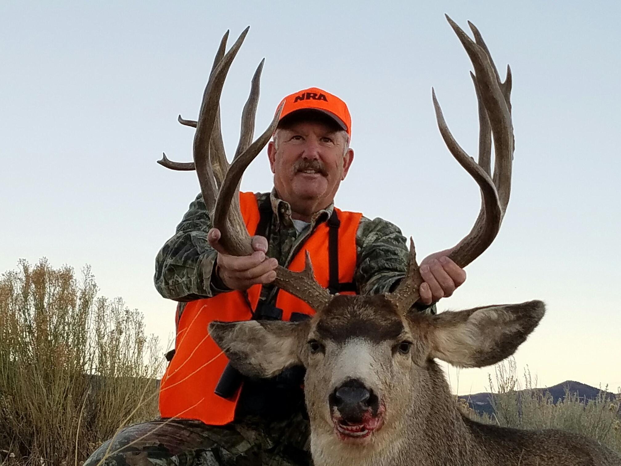 Sullivan Bros Deer