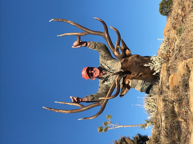 Sullivan Bros Elk3
