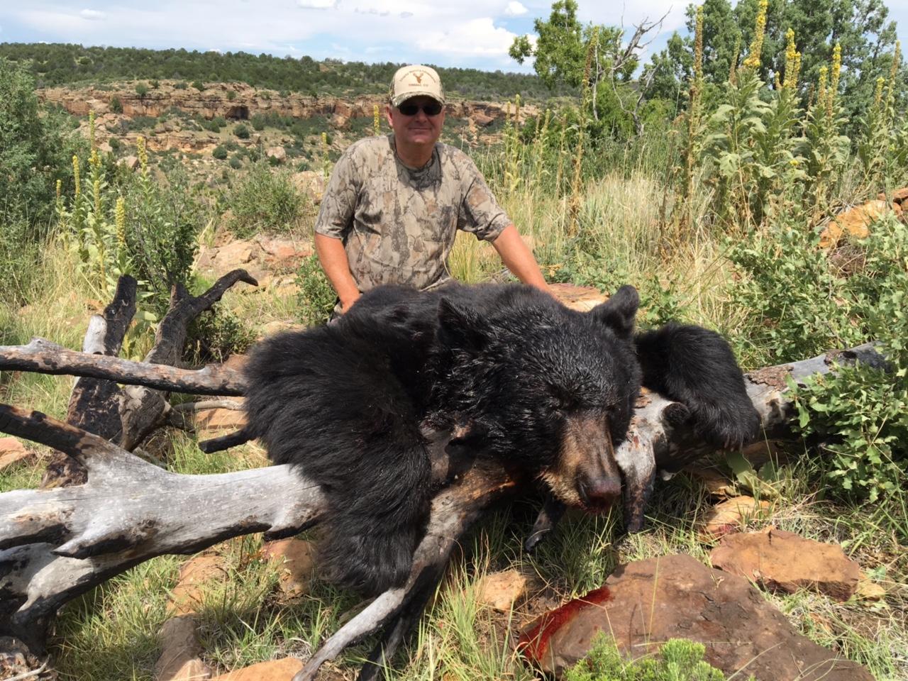 THA Black Bear