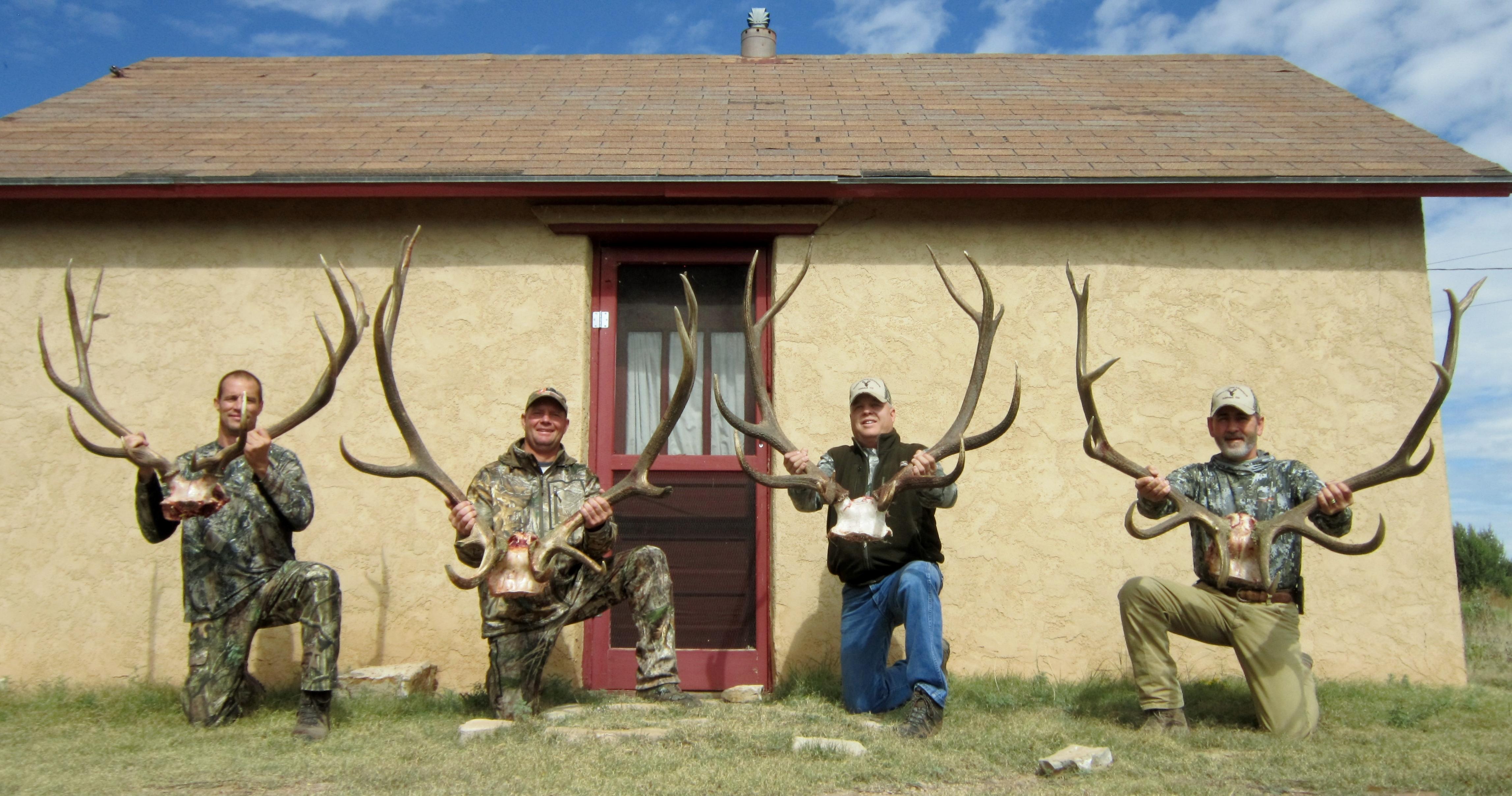 THA Elk Group