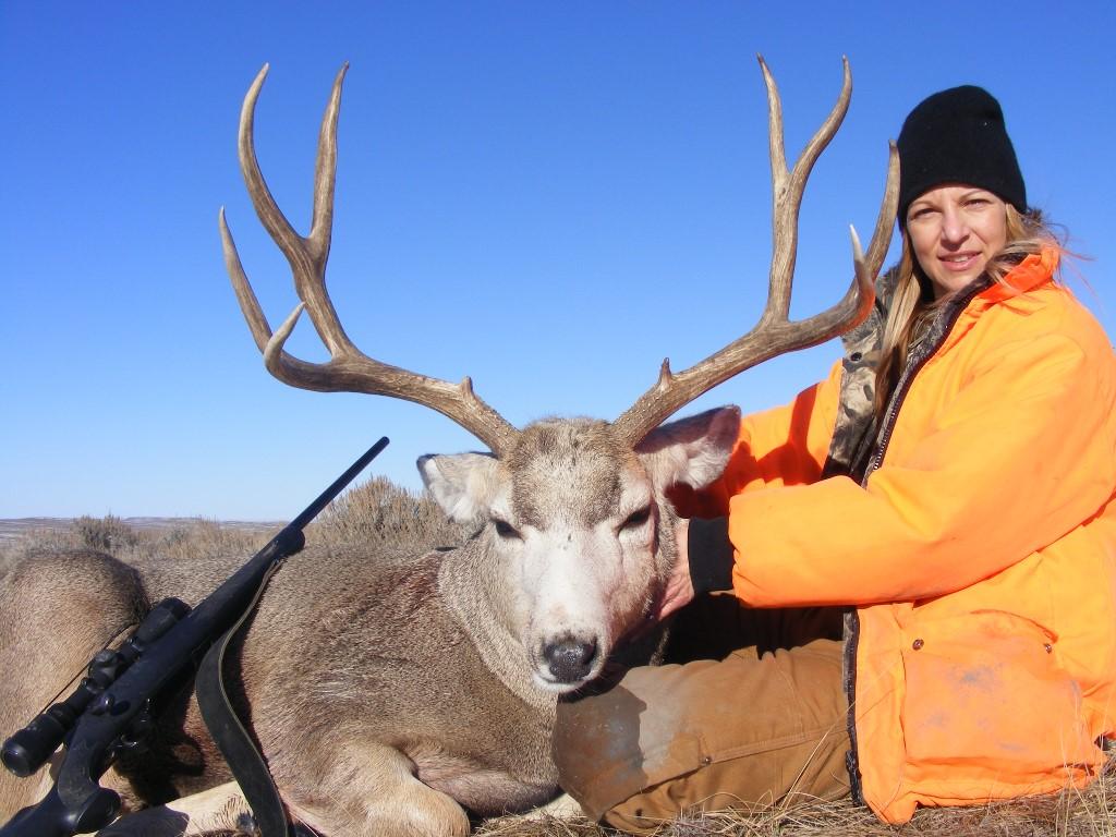 TP MT Mule Deer2013