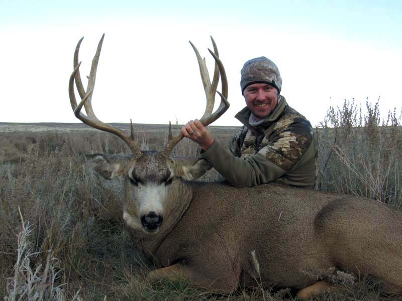 TP Mule Deer4