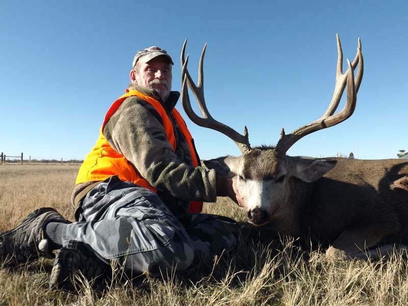 TP Mule Deer7
