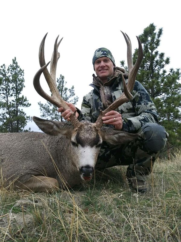 TW Deer6