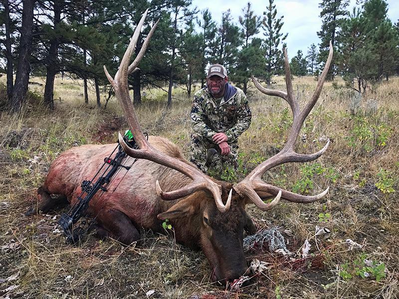 TW Elk4