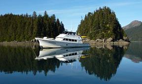 WB Bear Boat2